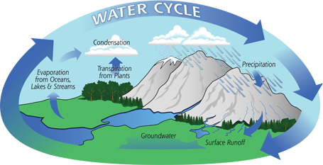 Water Cycle Small